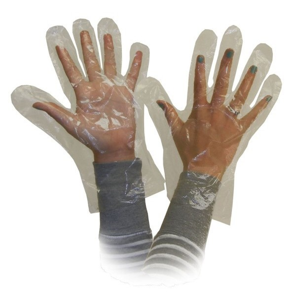 Ronco - 142 - Medium Polyethylene Disposable Glove / Deli Gloves  500/Pack
